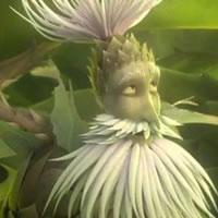 Житель лесного царства