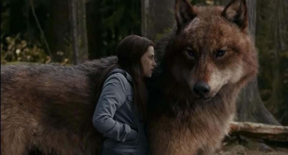 Сумерки 3: Сага. Затмение / The Twilight saga: Eclipse (кадр из фильма)