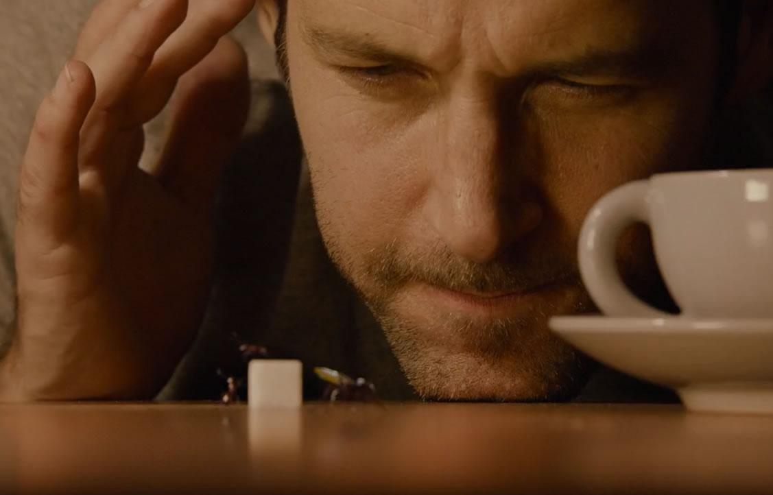 Человек-муравей / Ant-man (кадр)